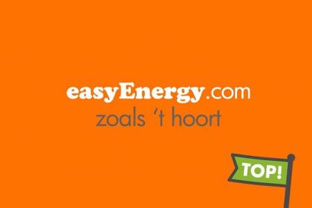 Afbeeldingsresultaat voor easyenergie logo